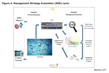 Figure 4. Management Strategy Evaluation (MSE) cycle.