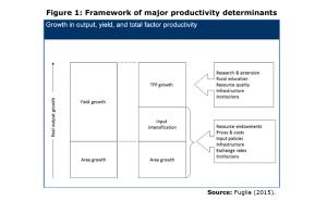 Figure 1: Framework of major productivity determinants