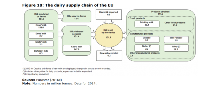 Figure 18: The dairy supply chain of the EU