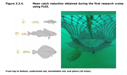 FIGURE 3.3.4: Mean catch reduction obtained during the first research cruise using FLEX