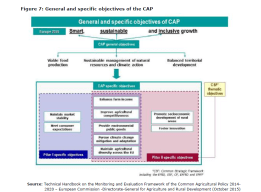 Figure 7: General and specific objectives of the CAP