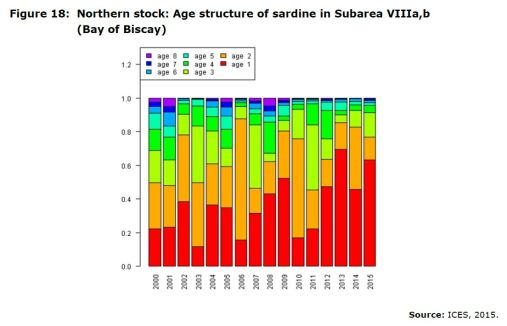 Figure 18: Northern stock: Age structure of sardine in Subarea VIIIa,b (Bay of Biscay)