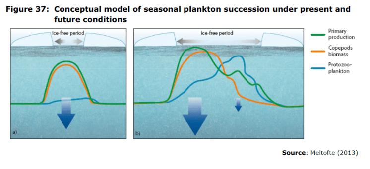 Figure 37 Conceptual model of seasonal plankton succession under present and future conditions