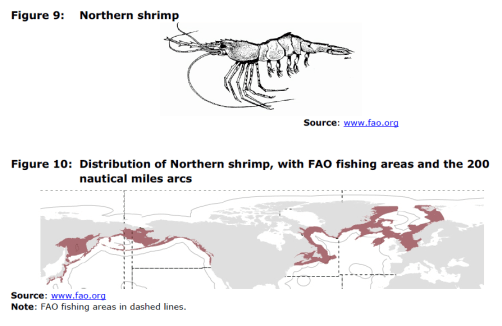Figure 9 Northern shrimp and Figure 10 Distribution of Northern shrimp, with FAO fishing areas and the 200 nautical miles arcs