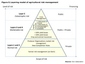Figure 6.Layering model of agricultural risk management