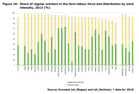 Figure 16 Share of regular workers in the farm labour force and distribution by work intensity, 2013 (%)