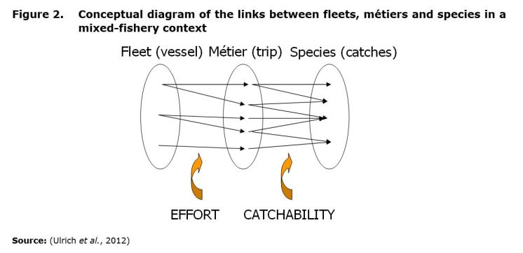 Figure 2. Conceptual diagram of the links between fleets, métiers and species in a mixed-fishery context