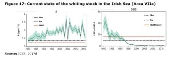 Figure 17: Current state of the whiting stock in the Irish Sea (Area VIIa)