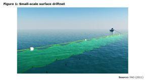 Figure 1: Small-scale surface driftnet