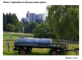 Photo 1: Agriculture in the peri-urban sphere