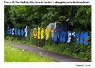 Photo 12: The Hackney City Farm in London is struggling with declining funds