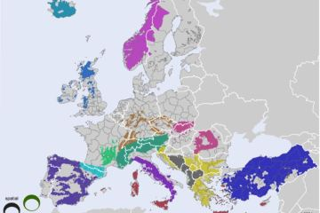 Cohesion in Mountainous Regions of the EU