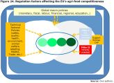 Figure 24. Regulation factors affecting the EU's agri-food competitiveness