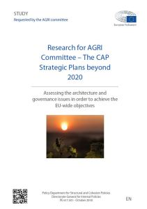 The CAP Strategic Plans beyond 2020 - Assessing the architecture in order to achieve the EU-wide objectives