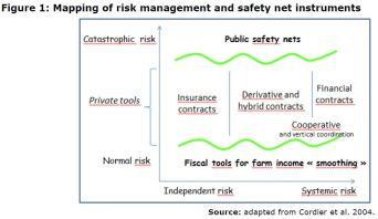 Figure 1: Mapping of risk management and safety net instruments