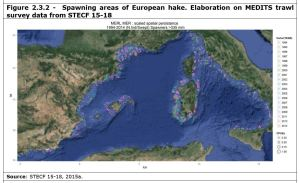 Figure 2.3.2 - Spawning areas of European hake. Elaboration on MEDITS trawl survey data from STECF 15-18