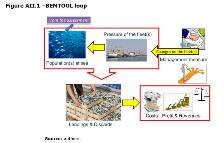 Figure AII.1 –BEMTOOL loop