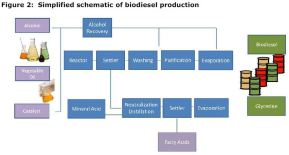 Figure 2: Simplified schematic of biodiesel production