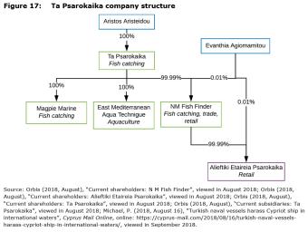 Figure 17: Ta Psarokaika company structure