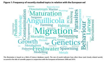 Figure 1: Frequency of recently studied topics in relation with the European eel