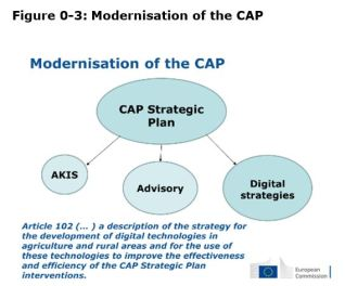 Figure 0 3: Modernisation of the CAP