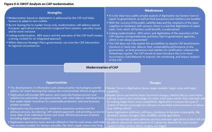 Figure 0 4: SWOT Analysis on CAP modernisation