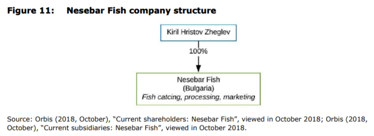 Figure 11: Nesebar Fish company structure