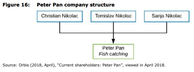 Figure 16: Peter Pan company structure
