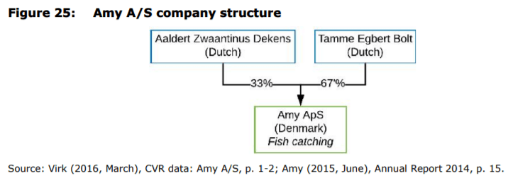 Figure 25: Amy A/S company structure