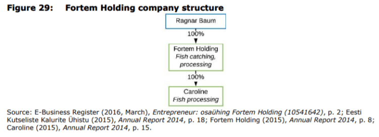 Figure 29: Fortem Holding company structure