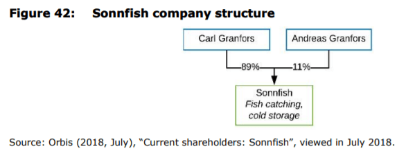 Figure 42: Sonnfish company structure