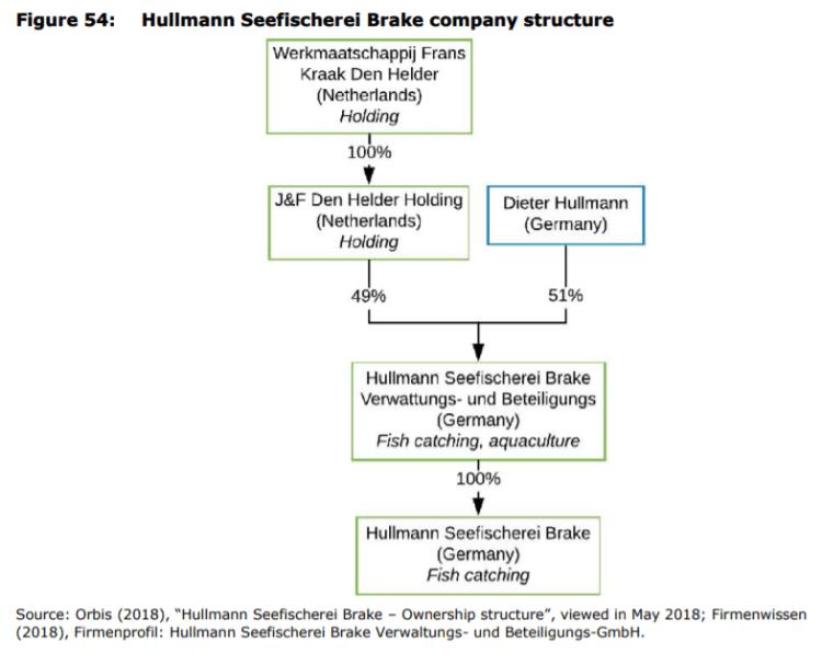 Figure 54: Hullmann Seefischerei Brake company structure