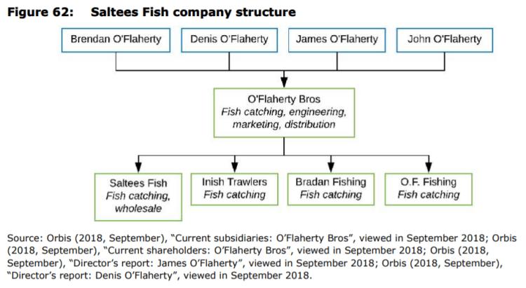 Figure 62: Saltees Fish company structure