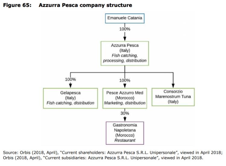 Figure 65: Azzurra Pesca company structure