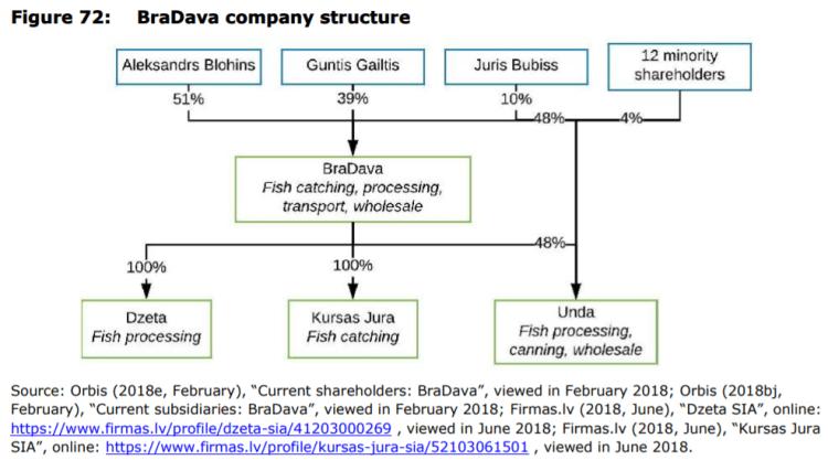 Figure 72: BraDava company structure