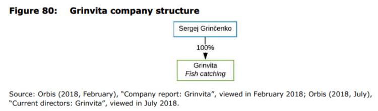 Figure 80: Grinvita company structure