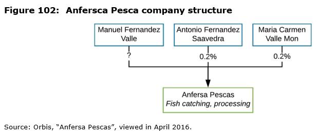 Figure 102: Anfersca Pesca company structure