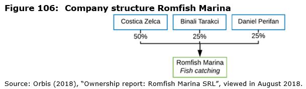Figure 106: Company structure Romfish Marina