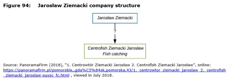 Figure 94: Jarosław Ziemacki company structure