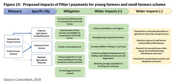 Proposed impacts of Pillar I payments for young farmers and small farmers scheme