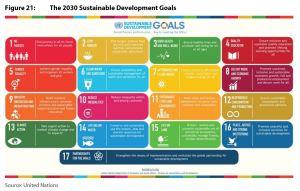 Figure 21: The 2030 Sustainable Development Goals