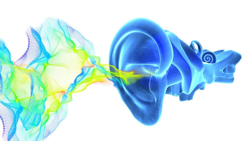using glutamate to reverse hearing loss