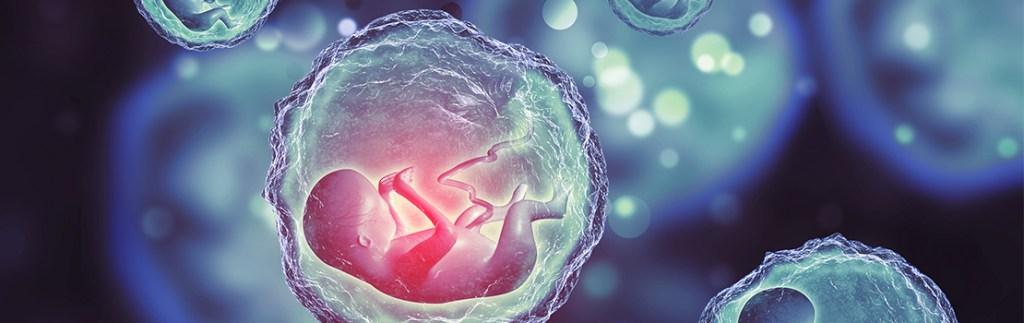 Dr Mohlin examines how infants develop neuroblastoma.