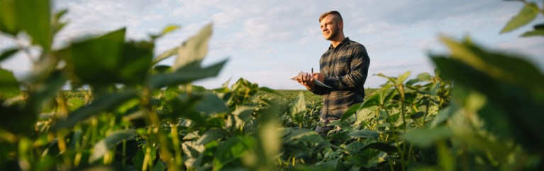 Dr Graham Brodie has designed a new slow-wave applicator that kills weeds using microwaves, which could lead to a reduction in the use of herbicides in agriculture