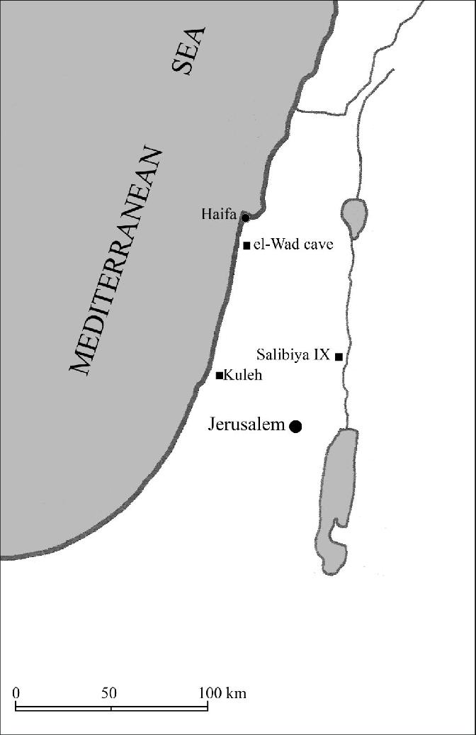 Ix Map : Indicating, Location, Sites, Salibiya, Quleh, And..., Download, Scientific, Diagram