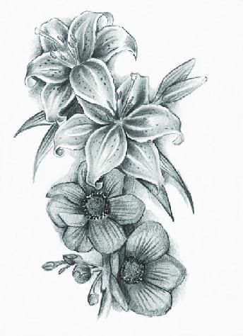 Anemone Tattoo : anemone, tattoo, Anemone, Flower, Tattoo., Download, Scientific, Diagram