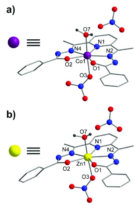 No3 1- : Molecular, Structures, [Co(DAPBH)(NO3)(H2O)](NO3), Analogous..., Download, Scientific, Diagram