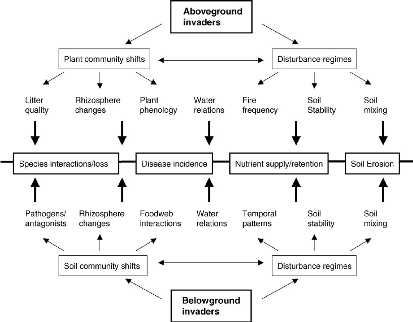 Diagram Illustrating The Various Mechanisms By Which
