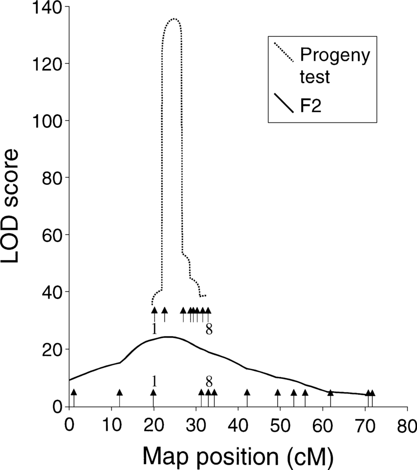 Chromosome Set Lod Score Plots Obtained By Interval Mapping For The X Chromosome