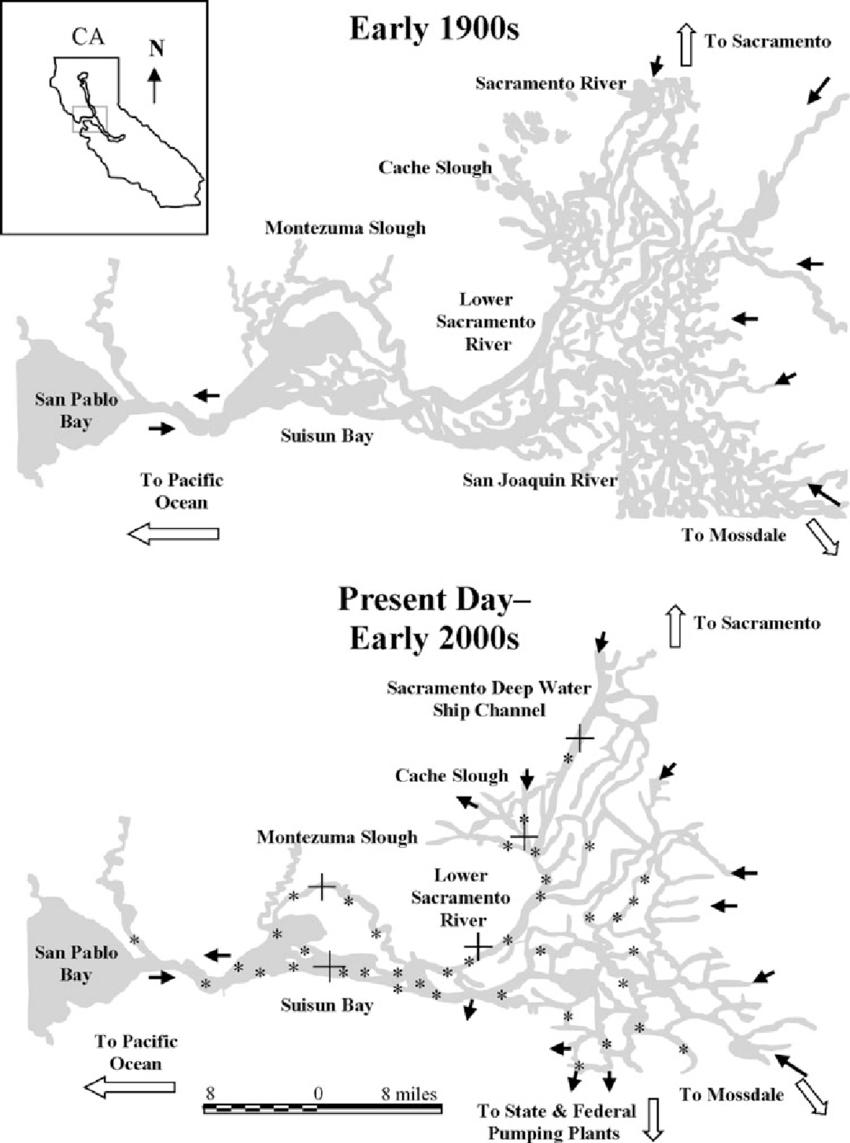 San Francisco Bay Fishing Map : francisco, fishing, Francisco, Bay-Delta,, California, Department, Fish..., Download, Scientific, Diagram